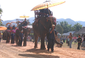 Elephants festival in Laos