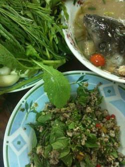 Laos food - Laap