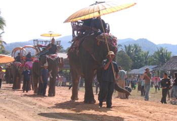 Elephants festival in Laos